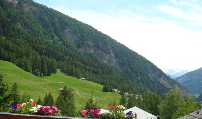 Leukerbad, for sale, chalet, rooms: 8 - 8